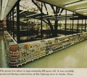 Safeway Austin Pecan Tree, 1977